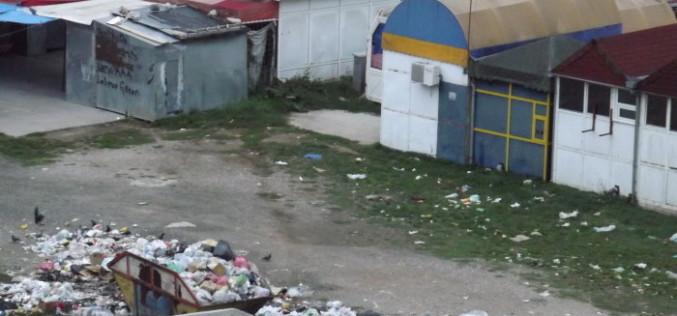 Mini-maxi deponija u centru grada