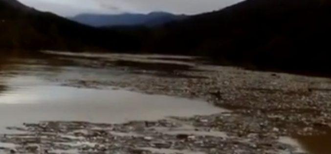 Jednom od najlepših jezera u Srbiji preti ekološka katastrofa! (video)