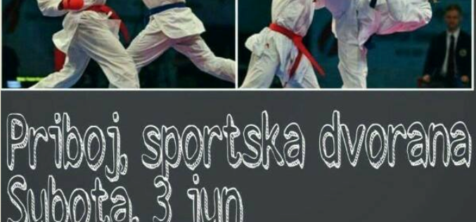 """Karate: Memorijalni turnir """"Kup """"Dragana Bjelića"""""""