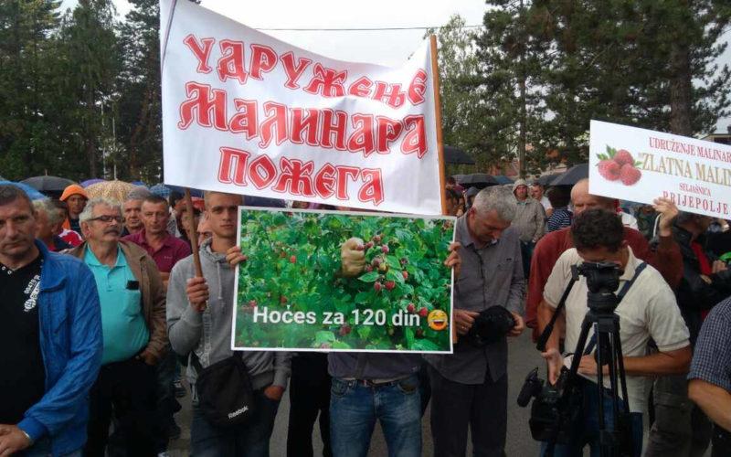 Malinari ljuti na vladu, ministarstvo i hladnjačare, najavljuju proteste